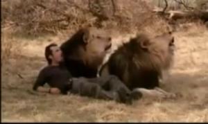 Jean pierre e os leões